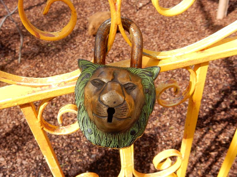 Pottering and playing london zoo lion padlock