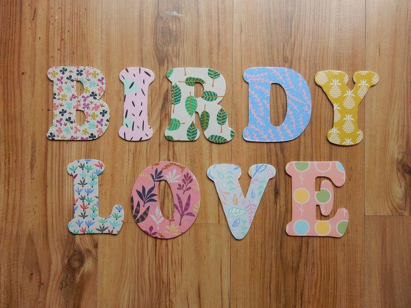 Birdy Love decoupage letters