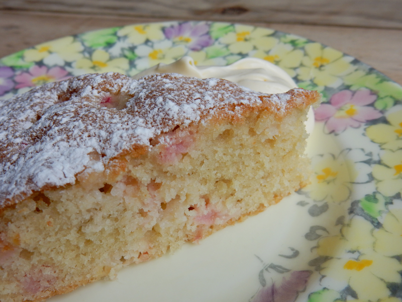 Lu rhubarb and custard cake slice from the side
